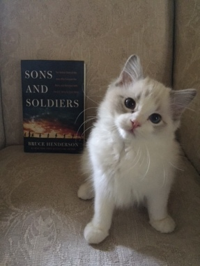 Lily and Sons cover